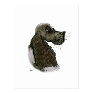 Springer Spaniel, tony fernandes Postcard