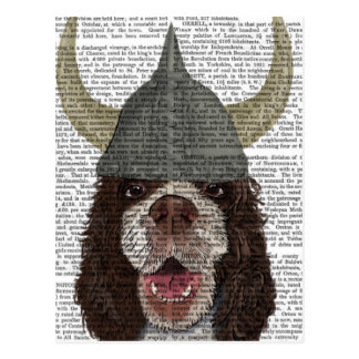 Springer Spaniel Viking Postcard