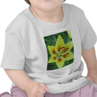 Springing into Summer T Shirts