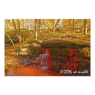 Springs Deeply Photo Print