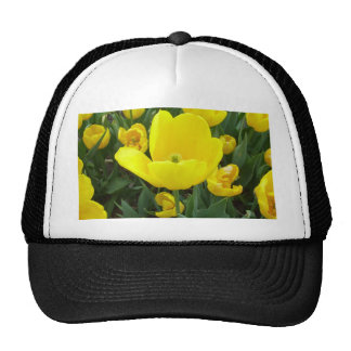 Spring's Sunshine Yellow Tulips CricketDiane Cap