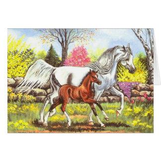 Springtime, Arabian Mare and Foal Card