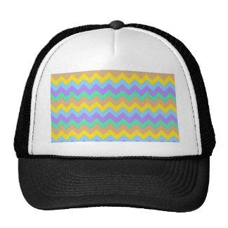 Springtime Chevron Hat