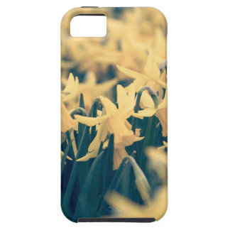 Springtime Daffodils iPhone 5 Case