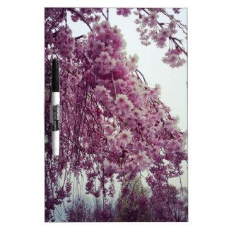Springtime Dry-Erase Board