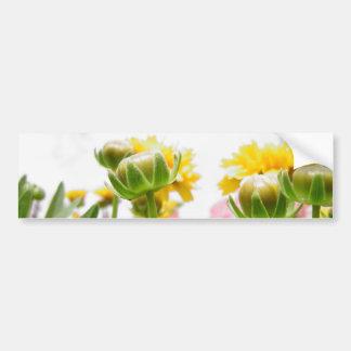 Springtime Flowers in Bloom Bumper Stickers