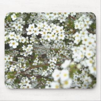 Springtime Flowers Mouse Pad