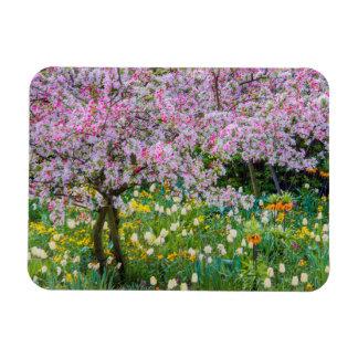Springtime in Claude Monet's garden Magnet