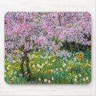 Springtime in Claude Monet's garden Mouse Mat