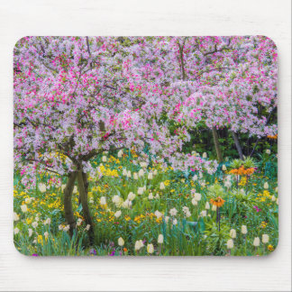 Springtime in Claude Monet's garden Mouse Pad