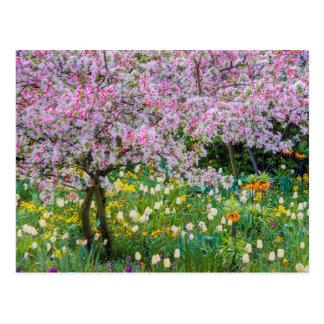 Springtime in Claude Monet's garden Postcard