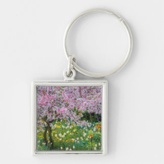 Springtime in Claude Monet's garden Silver-Colored Square Key Ring