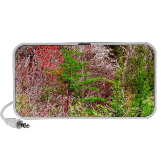Springtime in the Mountains Flowering Trees Photo Travel Speaker