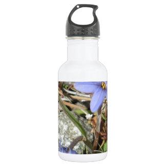 Springtime in the Mountains Purple Iris Flowers 532 Ml Water Bottle