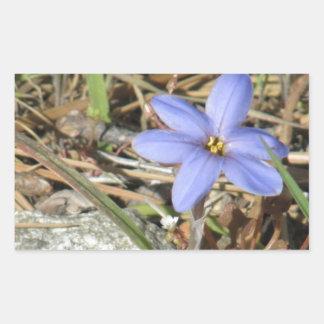 Springtime in the Mountains Purple Iris Flowers Rectangular Sticker