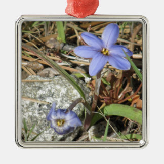 Springtime in the Mountains Purple Iris Flowers Silver-Colored Square Decoration