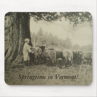 Springtime in Vermont! Mouse Pad