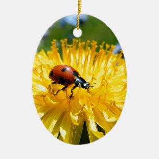 Springtime Ladybird on Dandelion Christmas Ornament