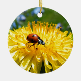 Springtime Ladybird on Dandelion Round Ceramic Decoration
