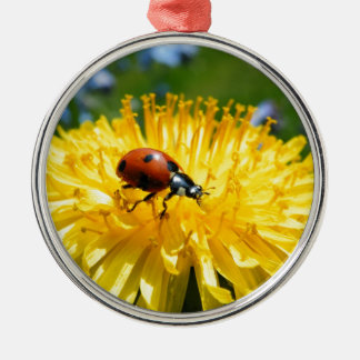 Springtime Ladybird on Dandelion Silver-Colored Round Decoration