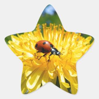 Springtime Ladybird on Dandelion Star Sticker