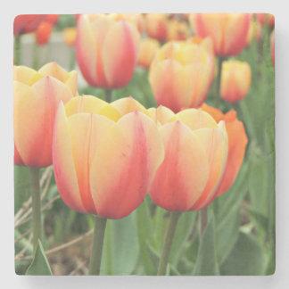 Springtime Tulips Stone Coaster