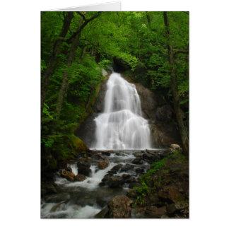 Springtime Waterfall Card