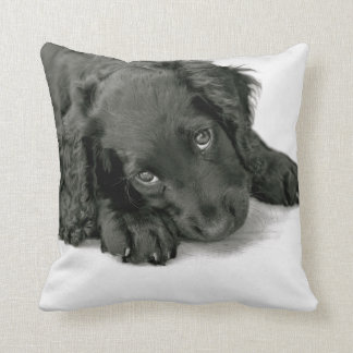 Sprocker Spaniel Dave Throw Pillow