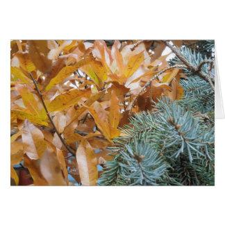 Spruce and Oak Card