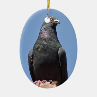Spud the pigeon ceramic oval decoration