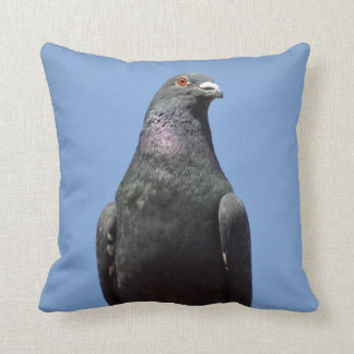 Spud the pigeon pillow