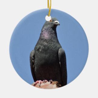 Spud the pigeon round ceramic decoration
