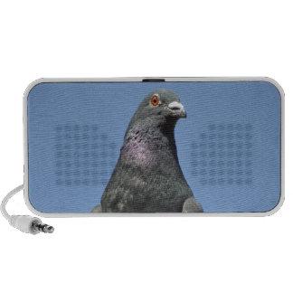 Spud the pigeon travelling speaker