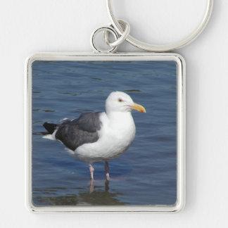 Spunky Wading Seagull Keychain
