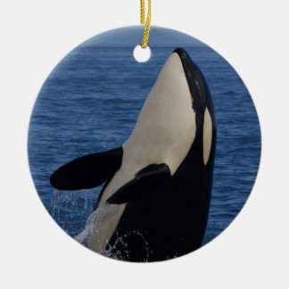 Spyhopping Orca Christmas Ornament