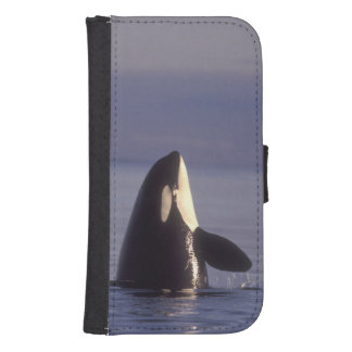 Spyhopping Orca Killer Whale (Orca orcinus) near Samsung S4 Wallet Case