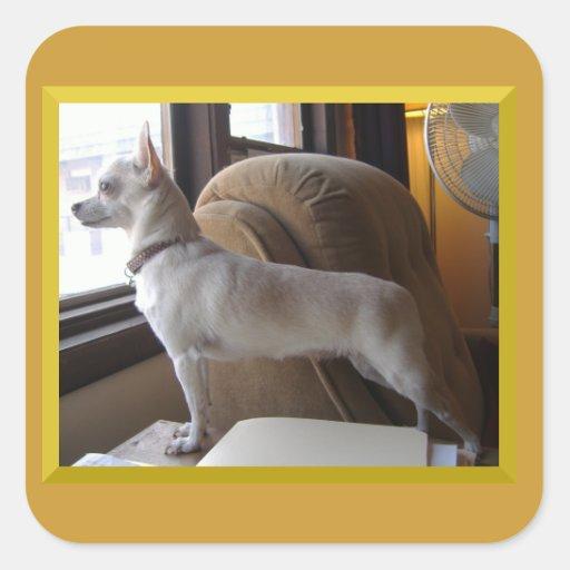 Square Chihuahua Profile Stickers