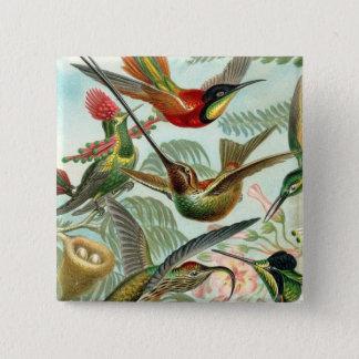 Square Hummingbird Button