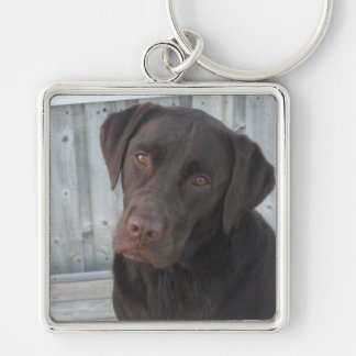Square Keychain - Chocolate Lab