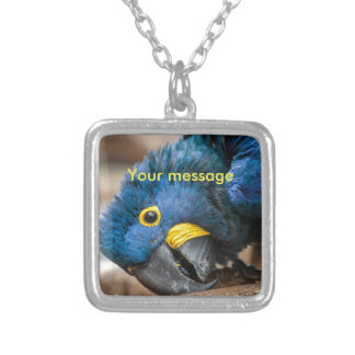Square Necklance of cute Hyacinth Macaw parrot Silver Plated Necklace