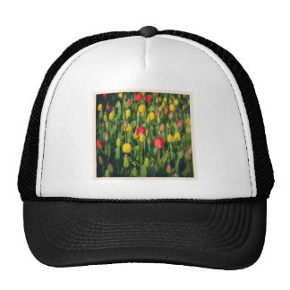 Square Photo - Colorful Tulips Mesh Hat