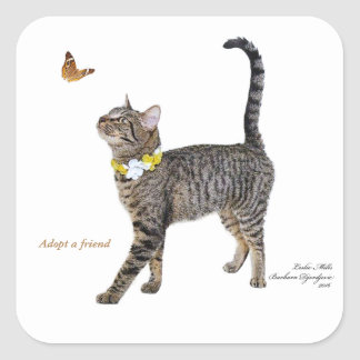 Square Stickers Featuring Tabatha, the Tabby