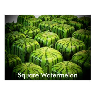 Square Watermelon Postcard