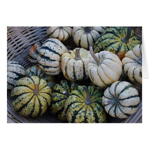 Squash Fall Harvest- Autumn Greeting Card