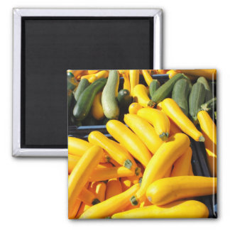 Squash in Yellow and Green Square Magnet