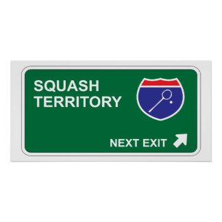 Squash Next Exit Poster