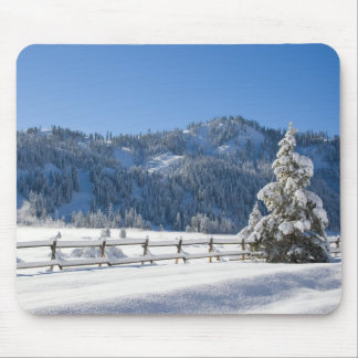 Squaw Valley Powder Morning Mousepad