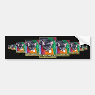 Squeak The Wonder Cat! Bumper Sticker
