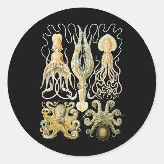 Squid & Octopus Round Sticker