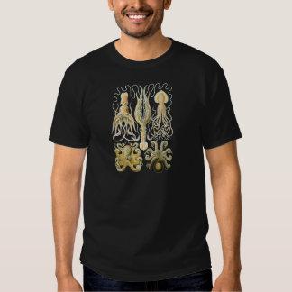 Squid & Octopus Tee Shirts